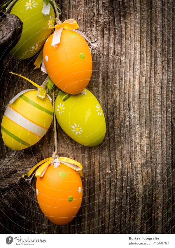 Easter is coming Ostern Holz rund schön mehrfarbig 2016 März Eier Dekoration & Verzierung Easter Eggs Außenaufnahme Nahaufnahme Menschenleer Abend Licht
