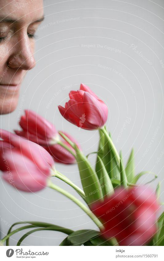 Tulpen Mensch Frau schön Gesicht Erwachsene Leben Gefühle Frühling Stil Lifestyle Stimmung hell rosa Freizeit & Hobby frisch genießen