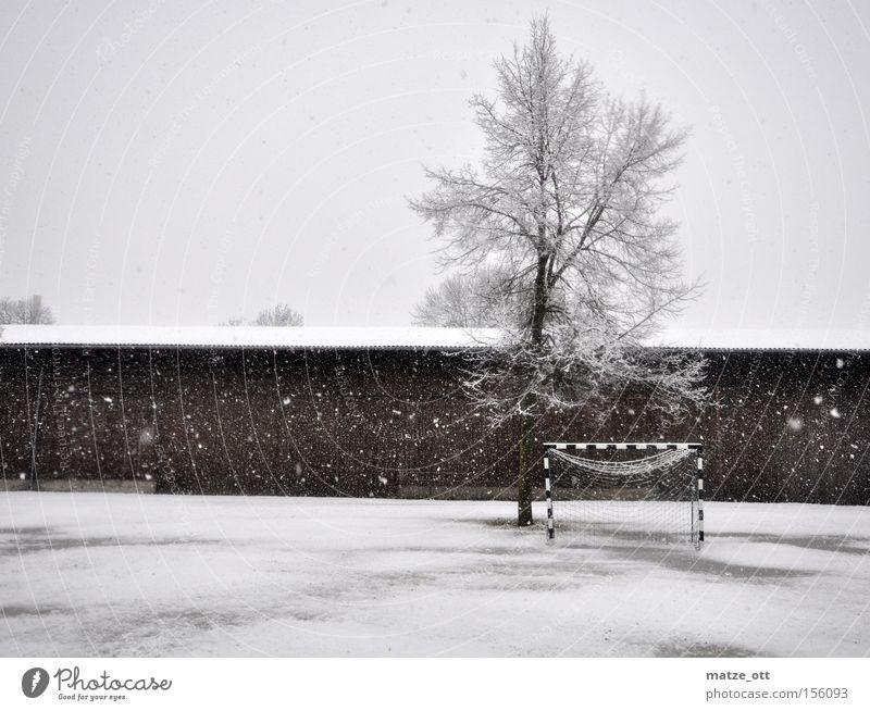 ... ein Wintermärchen TEIL 1 Baum kalt Schnee Sport Spielen Schneefall Wetter Fußball Rasen Sportrasen Tor Kroatien Scheune Weltmeisterschaft Handball