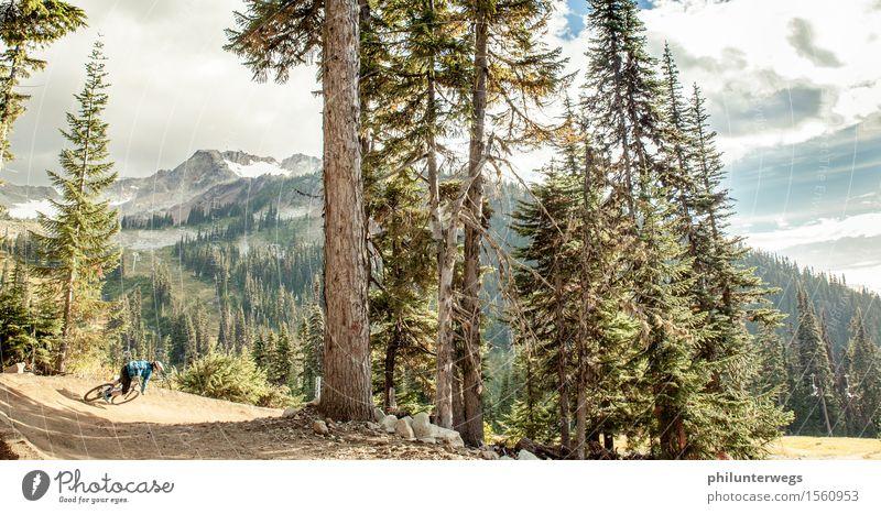 Last way down Freizeit & Hobby Freiheit Sport Fahrradfahren Landschaft Sommer Baum Hügel Felsen Alpen Berge u. Gebirge Gipfel Schneebedeckte Gipfel ästhetisch