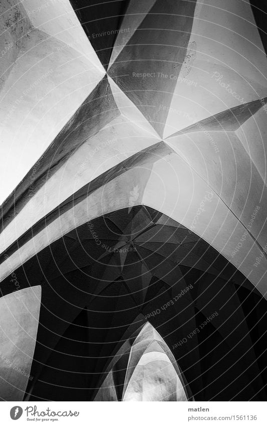 Gewölbe Altstadt Menschenleer Haus Palast Bauwerk Gebäude Architektur Mauer Wand Dach hoch Spitze Kreuz Gewölbebogen Facette Schwarzweißfoto Innenaufnahme
