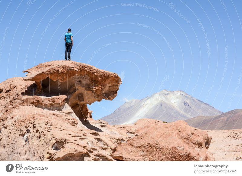 Marslandschaft Mensch Natur Ferien & Urlaub & Reisen Landschaft Ferne Freiheit Felsen wandern Ausflug Abenteuer Gipfel Urelemente Vulkan Südamerika Bolivien