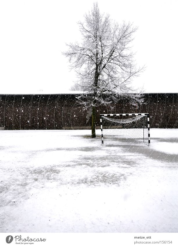 ... ein Wintermärchen TEIL 2 Baum kalt Schnee Sport Spielen Schneefall Wetter Fußball Rasen Sportrasen Jahreszeiten Tor Kroatien Scheune Schneeflocke