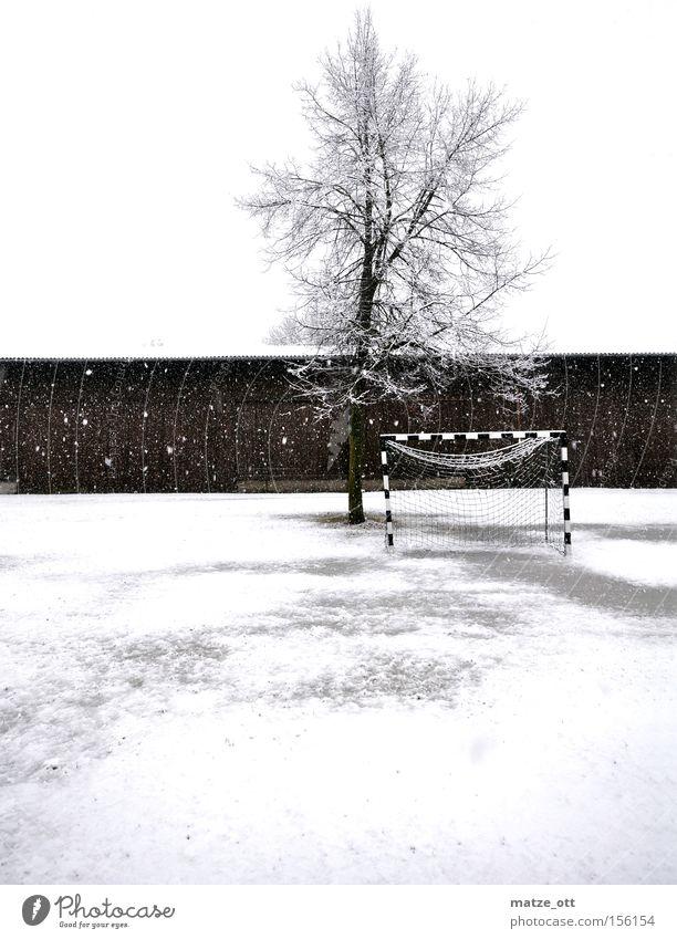 ... ein Wintermärchen TEIL 2 Baum Winter kalt Schnee Sport Spielen Schneefall Wetter Fußball Rasen Sportrasen Jahreszeiten Tor Kroatien Scheune Schneeflocke