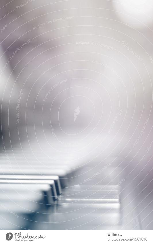 Tasten eines Klaviers oder einer Orgel Musikinstrument Klaviatur Tasteninstrumente Erholung Keyboard Kultur Innenaufnahme Detailaufnahme Unschärfe