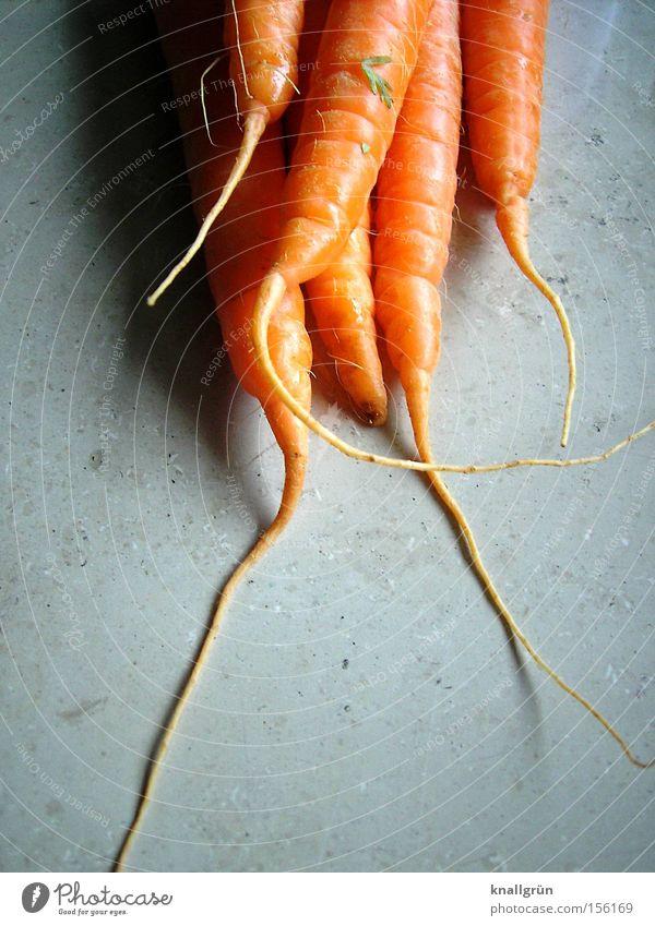 Hasenfutter Ernährung orange Gesundheit Kochen & Garen & Backen Gemüse Möhre Wurzel Wurzelgemüse Vegetarische Ernährung Rohkost
