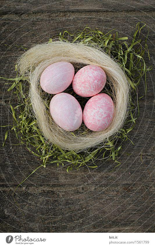 künstlich | nicht vom Huhn Ostern Kreativität Tradition Osterei Osternest Osterhase Ostermontag Nest Holz Farbe Außenaufnahme Menschenleer Textfreiraum unten