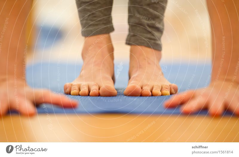 ...geschafft! Gesundheit Leben Wohlgefühl Erholung ruhig Meditation Freizeit & Hobby Sport Fitness Sport-Training Yoga Mensch Arme Hand Finger Fuß Zehen dünn