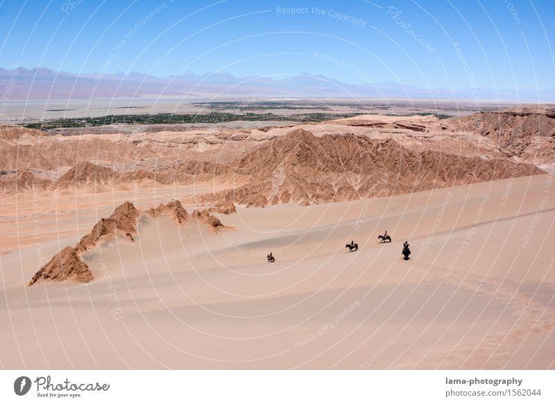 Wüstenritt III Ferien & Urlaub & Reisen Tier Ferne Sand Felsen Ausflug Abenteuer Pferd heiß Düne Expedition Chile Südamerika Reiten Oase