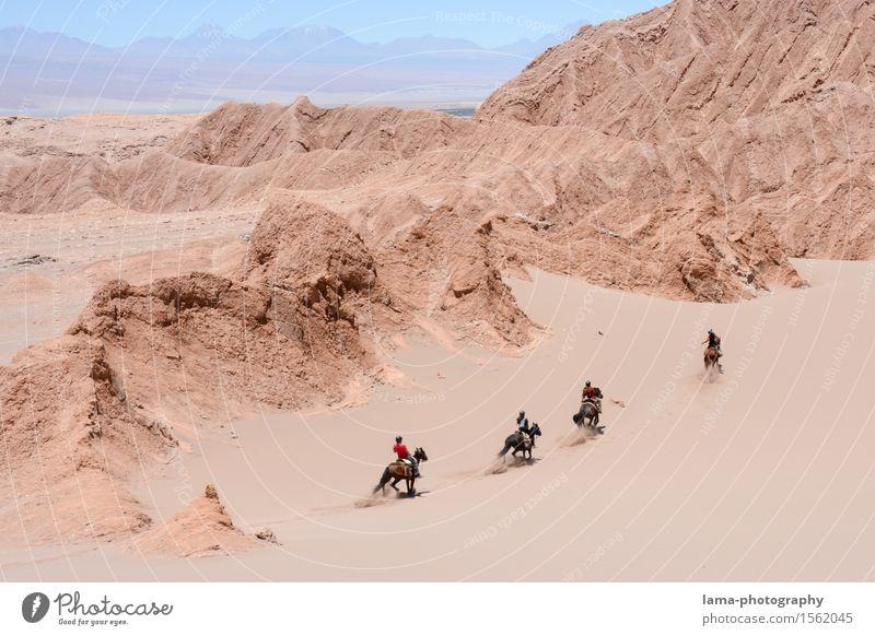 Wüstenritt II Reiten Ausritt Ferien & Urlaub & Reisen Ausflug Abenteuer Ferne Expedition Sand Felsen Salar de Atacama Düne Región de Antofagasta