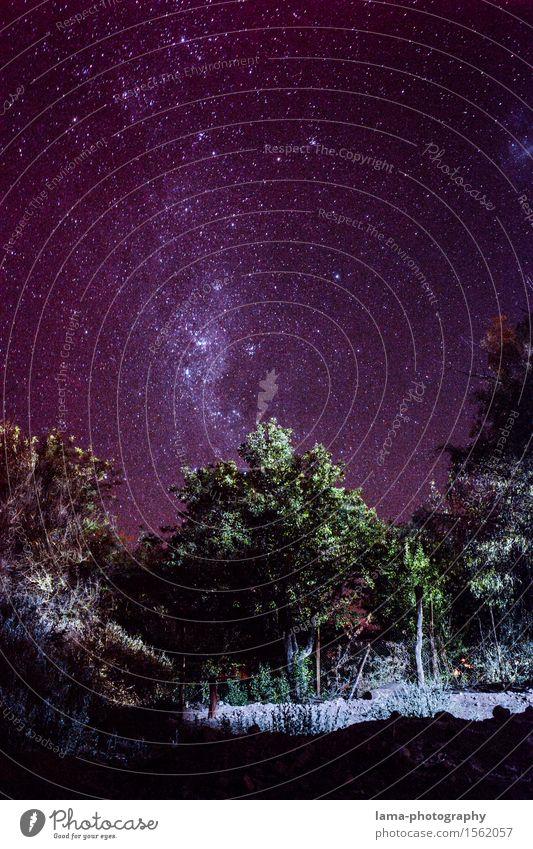 Atacama Milkyway Ferien & Urlaub & Reisen Baum Ferne leuchten Stern Wolkenloser Himmel Camping Expedition Nachthimmel Chile Sternenhimmel Südamerika Astronomie