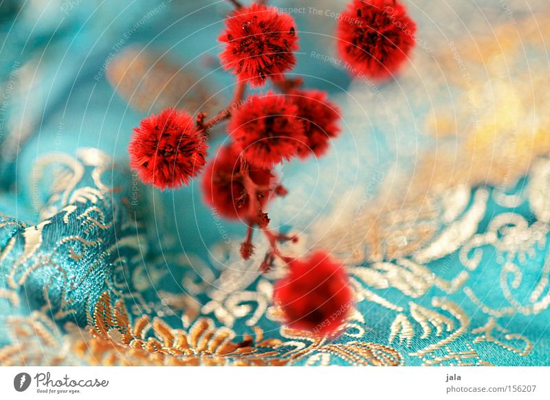 im fernen osten II Blume Pflanze rot gelb Spielen Asien Dekoration & Verzierung Stoff türkis Zweig Quaste Trockenblume