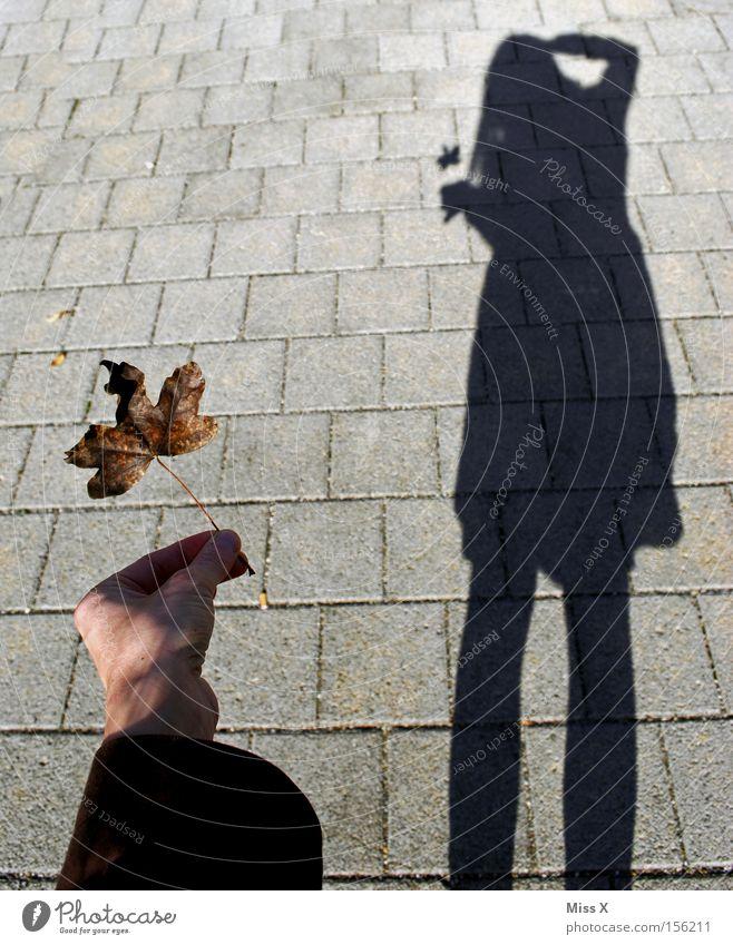 und was knipst du ? Frau Blatt Erwachsene schwarz Herbst grau Beine Bürgersteig Schatten Fotograf Fotografieren Selbstportrait Beruf herbstlich unterwegs Ahornblatt
