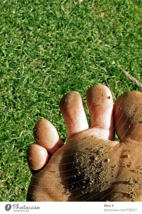 Dreckfuß Sommer Wiese Wärme Gras Stein Fuß dreckig Barfuß Zehen Schlamm steinig Pediküre