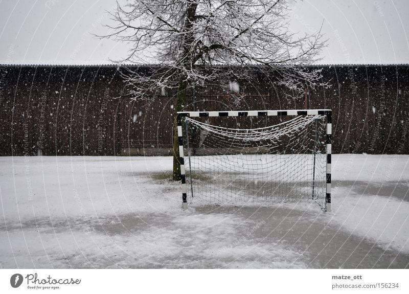 ... und noch ein Wintermärchen TEIL 3 Handball Fußball Winterpause Tor Weltmeisterschaft Schnee Schneefall Wetter Kroatien Rasen Sportrasen kalt Baum Scheune