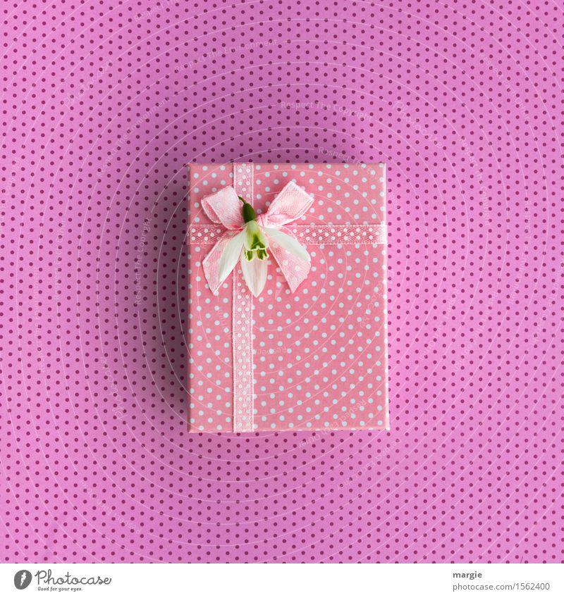 Rosa Geschenk, Päckchen, Schleife, Band, Blumenblüte, und Punkte kaufen Design Freude Basteln Feste & Feiern Muttertag Hochzeit Geburtstag exotisch Zeichen