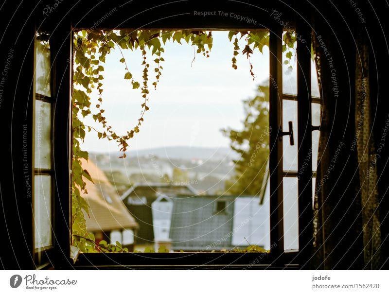 Guten Morgen Ferien & Urlaub & Reisen Pflanze Erholung Landschaft Einsamkeit Fenster Garten hell Feld Idylle offen Romantik Dach Dorf Rahmen ländlich
