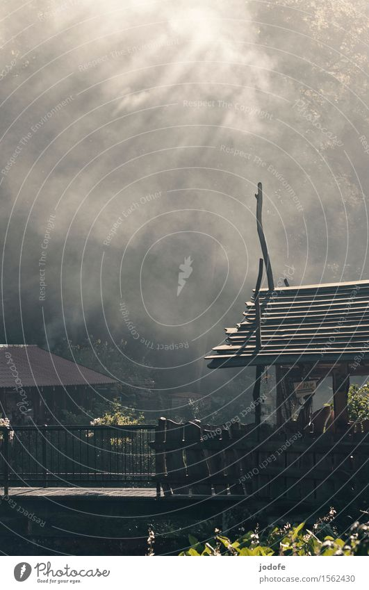 Räucherei Natur Feuer Luft Rauchen geräuchert Haus Fischereiwirtschaft Holz Brücke Wald Farbfoto Gedeckte Farben Außenaufnahme Menschenleer Tag Licht Schatten