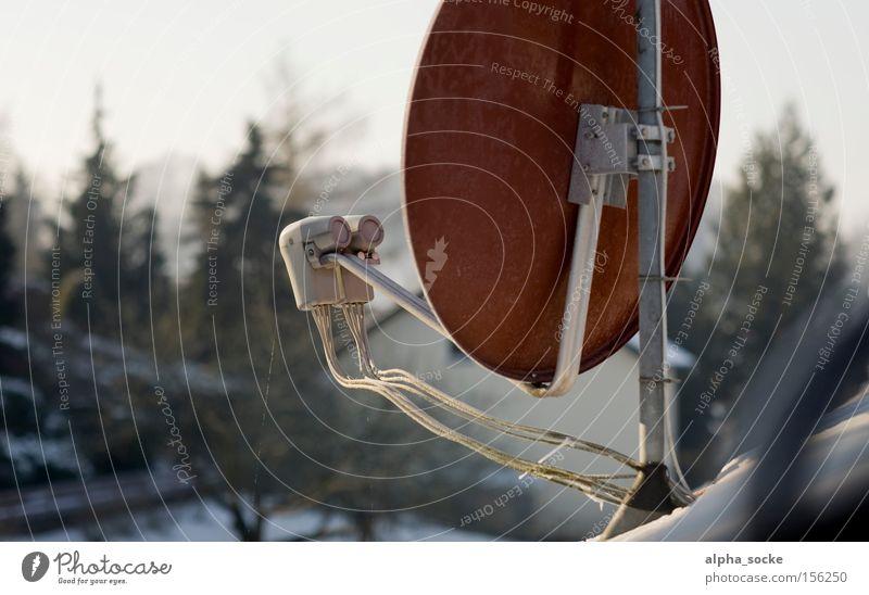Satellitenschüssel rot Winter Technik & Technologie Fernseher Fernsehen digital Schalen & Schüsseln Antenne Digitalfotografie Januar Elektrisches Gerät Satellitenantenne