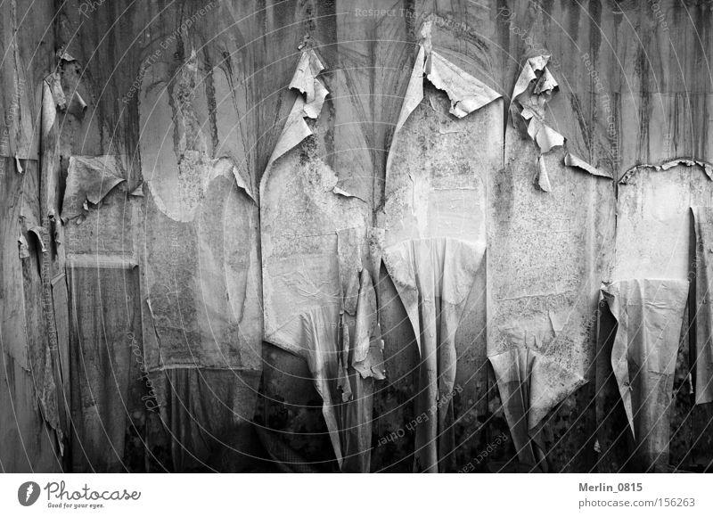 Tapetenwechsel Wand alt Verfall kaputt hängend modern verfaulen schäbig dunkel Zeit grau Renovieren Umzug (Wohnungswechsel) Modernisierung tapezieren streichen