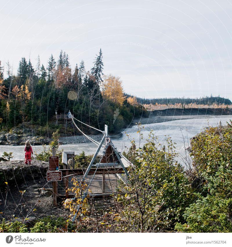 Bachquerung in Alaska - Alaska 29 Fitness Leben Ferien & Urlaub & Reisen Ausflug Ferne Freiheit Sommer wandern Mädchen 1-3 Jahre Kleinkind Natur Wasser Herbst