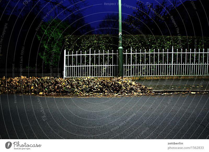 Zaun am Abend Metall Hecke Grundstück Nachbar Grenze Besitz Straße Asphalt Herbst Blatt Herbstlaub Laubbaum Haufen Sauberkeit Kehren Hausmeister