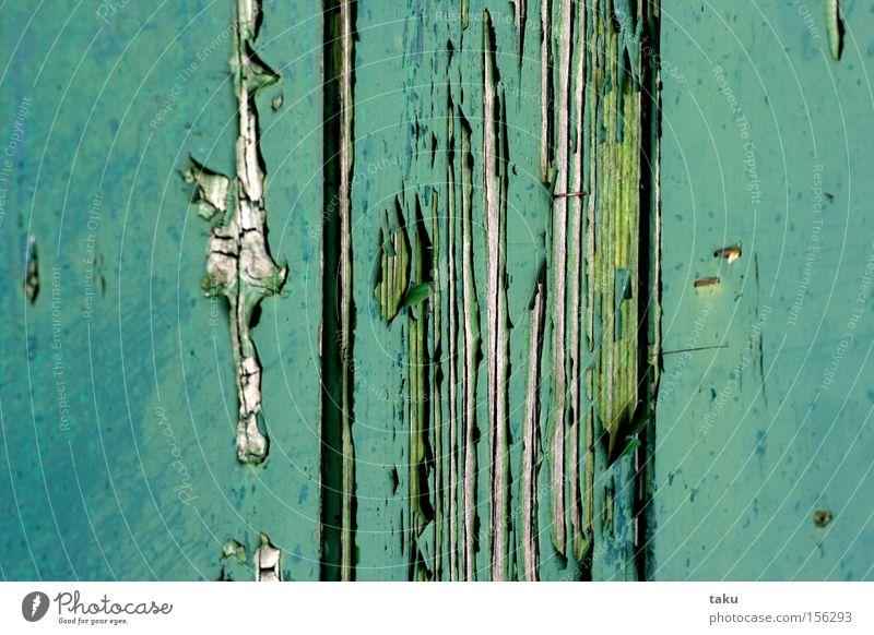 SOFT GREEN Farbfoto Außenaufnahme Nahaufnahme Detailaufnahme Muster Strukturen & Formen Hintergrund neutral Licht Menschenleer Hütte Bauwagen Anhänger Holz