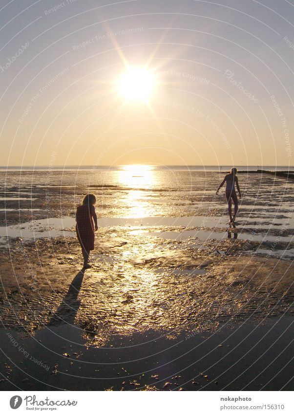 Abendstimmung im Watt Meer Sommer Ferien & Urlaub & Reisen ruhig Erholung Freiheit Sonnenuntergang Nordsee Abenddämmerung Wattenmeer Ebbe
