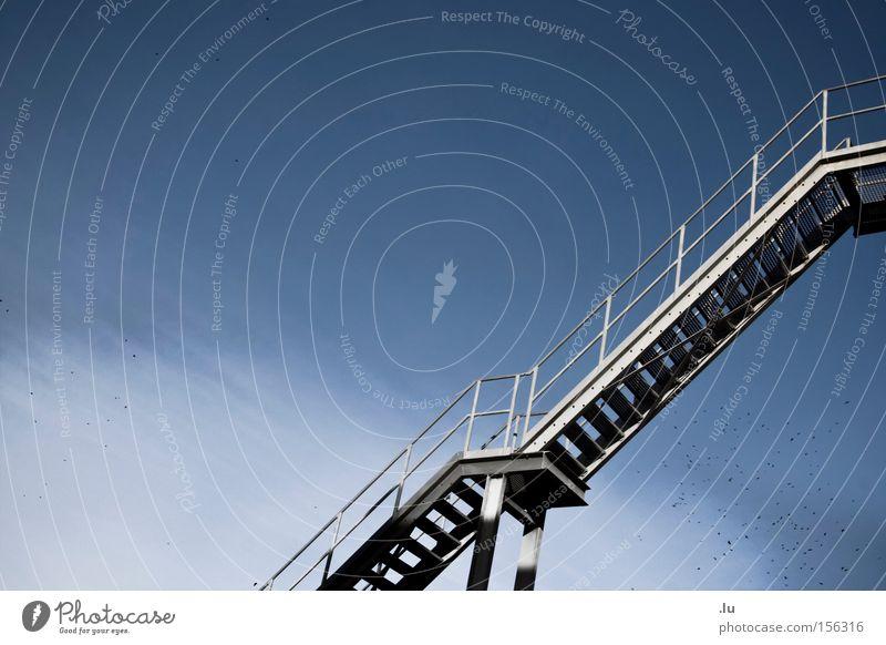 Über den Wolken Himmel Freiheit laufen Brücke Ziel Unendlichkeit Wolken obskur Richtung Leiter aufsteigen einrichten Vogelschwarm über den Wolken