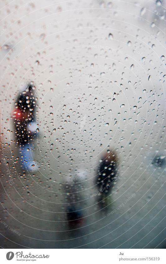 Outstanding Mensch Wasser sprechen Menschengruppe Regen Wassertropfen nass Kommunizieren frieren feucht ungemütlich