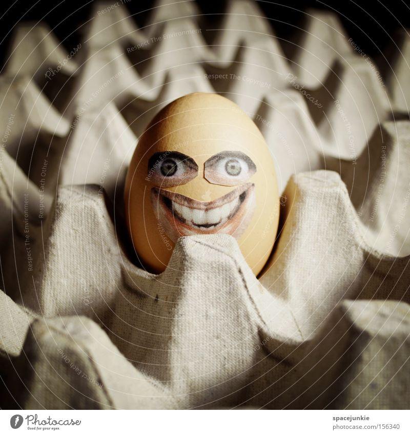 Happy egg Ei Eierschale Karton Verpackung Pappschachtel Eigelb Ostern Gesicht grinsen lachen skurril Freude