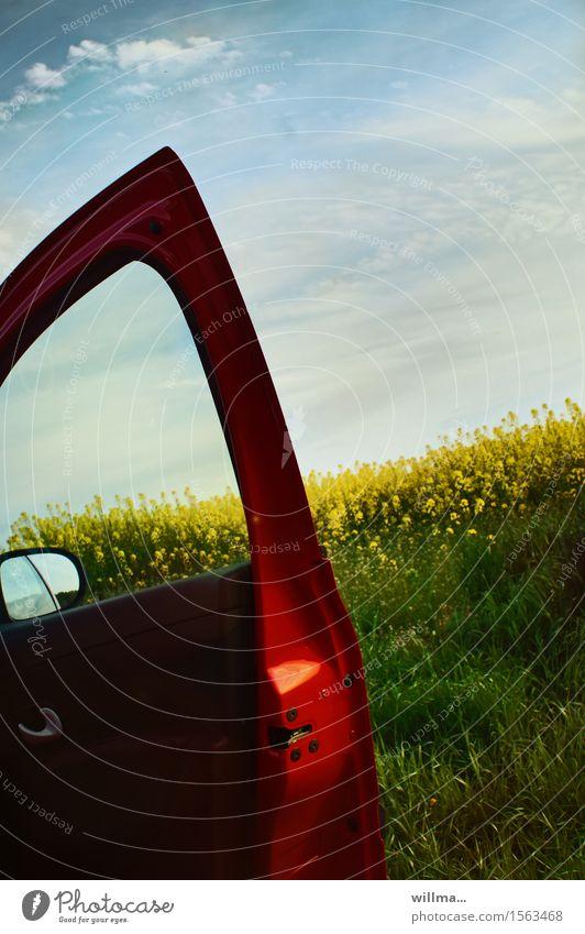 stadtrandblues Frühling Rapsfeld Rapsblüte Nutzpflanze Autotür Rückspiegel rot Frühlingstag Ausflug Natur Farbfoto Außenaufnahme