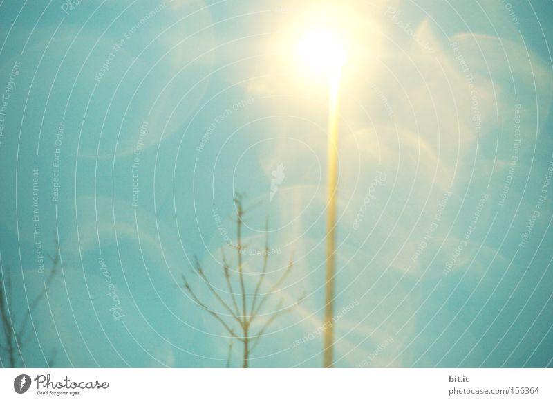 LICHT VON HIER NACH ÜBERALL II Himmel blau Baum träumen Lampe Kunst glänzend zart leuchten fantastisch Punkt Laterne Idee Straßenbeleuchtung sanft Zweig