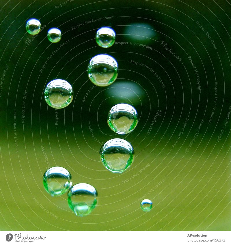 Blubb! *2 grün Wasser ruhig kalt frisch Wassertropfen nass rund Klarheit Konzentration Erfrischung Makroaufnahme Blase Durst Durstlöscher Luftblase