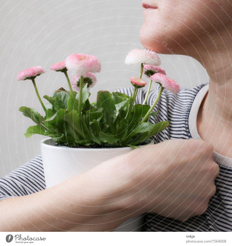 Blumentopf im Arm für Finti. Lifestyle Stil schön Freizeit & Hobby Frau Erwachsene Leben Gesicht Hand 1 Mensch Pflanze Frühling Topfpflanze Frühlingsblume