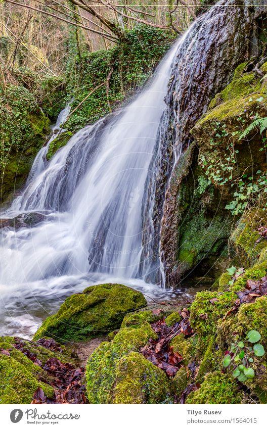 Wasserfall Altube Natur Ferien & Urlaub & Reisen Pflanze Farbe schön grün Baum Landschaft Blatt Wald Berge u. Gebirge Umwelt natürlich Bewegung Stein Felsen