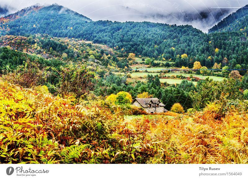 Herbst in den Pyrenäen schön Ferien & Urlaub & Reisen Berge u. Gebirge Umwelt Natur Landschaft Pflanze Himmel Wolken Baum Gras Blatt Wald Platz Wege & Pfade