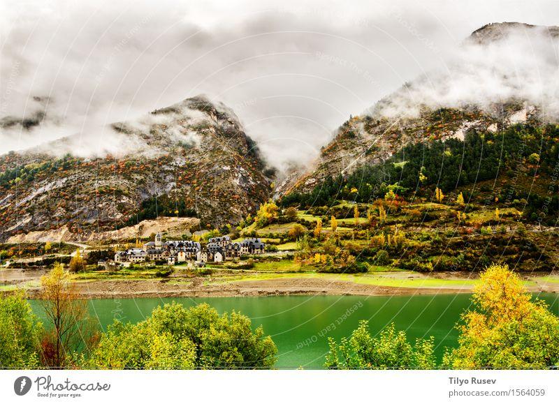 Herbst in den Pyrenäen schön Ferien & Urlaub & Reisen Berge u. Gebirge Umwelt Natur Landschaft Pflanze Baum Gras Blatt Park Wald Wege & Pfade frisch natürlich