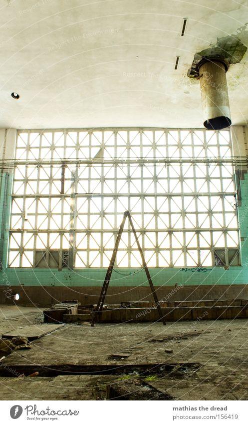 WITHOUT STANDING X Fenster Glasfassade hell Saal Leiter X-Men stehen Geometrie Strukturen & Formen Linie Schatten Raum Fensterputzen Mittagspause verfallen