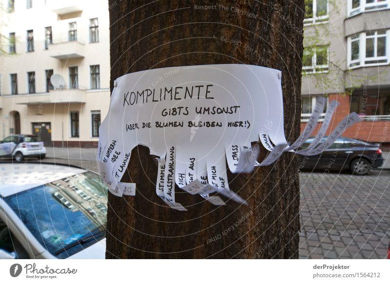 Berlin kann auch nett sein Ferien & Urlaub & Reisen Baum Freude Gefühle Frühling Graffiti Glück Tourismus Zufriedenheit Ausflug Schriftzeichen