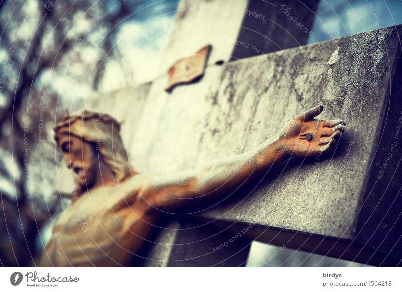 Karfreitag... maskulin 1 Mensch Himmel Baum Stein Kreuz Kruzifix Jesus Christus ästhetisch außergewöhnlich muskulös nackt Liebe Opferbereitschaft