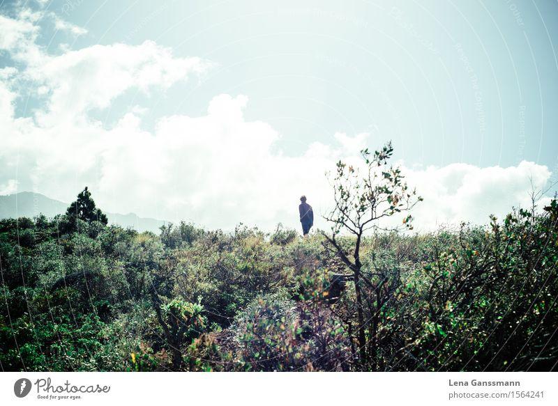 in der Natur Mensch Ferien & Urlaub & Reisen Mann Pflanze Sommer Erholung Landschaft Wolken Erwachsene Bewegung Freiheit maskulin Tourismus wandern Ausflug