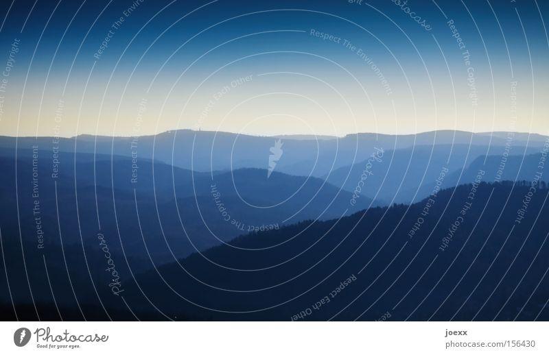 FLY LIKE AN EAGLE Natur Himmel Ferien & Urlaub & Reisen Ferne Wald Erholung Berge u. Gebirge Landschaft Nebel Horizont Aussicht Konzentration Fernweh