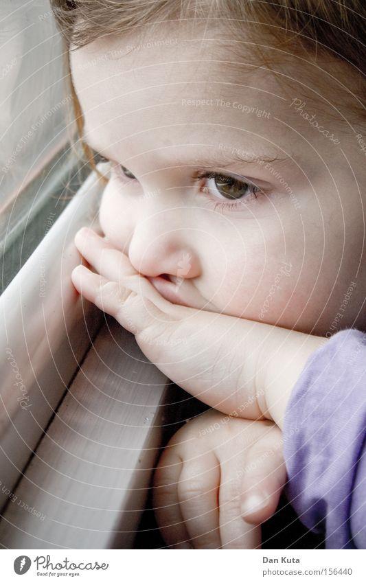 Blick in die Zukunft Kind Mädchen Freude Ferne Spielen Glück träumen Denken Baby Sicherheit süß Frieden niedlich Kleinkind verträumt