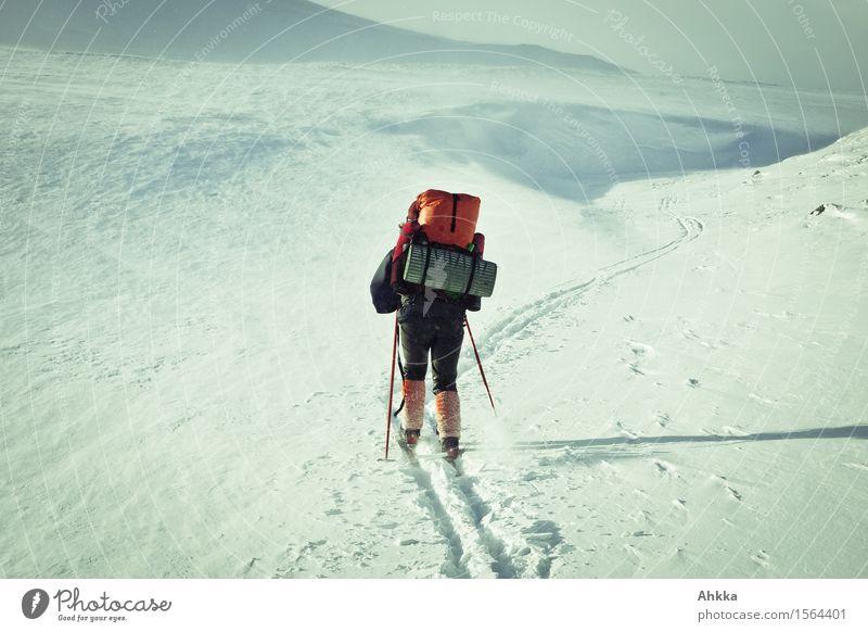 rückwärts Mensch Natur Ferien & Urlaub & Reisen Landschaft kalt Leben Wege & Pfade Bewegung Schnee Sport Stimmung wild Eis authentisch Energie Zukunft
