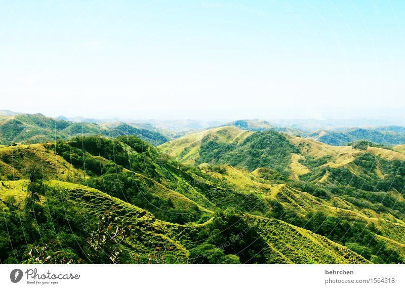 auf neuen wegen Himmel Natur Ferien & Urlaub & Reisen Pflanze grün schön Baum Landschaft Erholung Ferne Wald Berge u. Gebirge Gras außergewöhnlich Freiheit