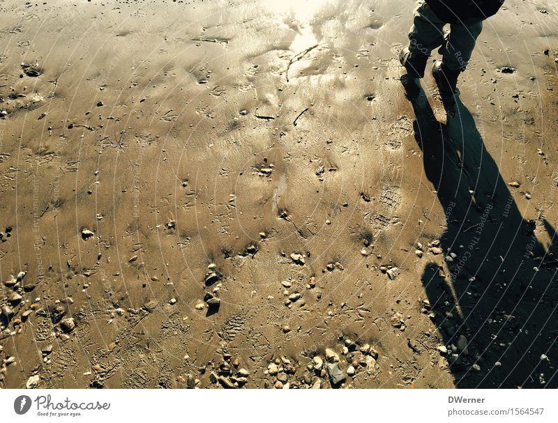am Rhein Freizeit & Hobby Spielen Ausflug Freiheit Strand Meer Mensch Kind Kleinkind 1 Umwelt Natur Urelemente Sand Wasser Fußspur Bewegung Fitness glänzend