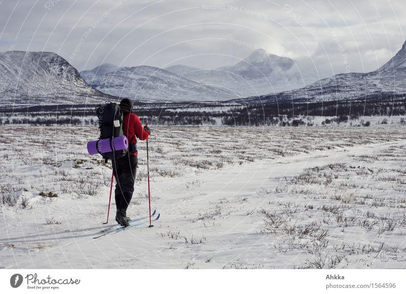 Rondane VI Schnee Winterurlaub Wintersport Skifahren Junger Mann Jugendliche 1 Mensch Landschaft Berge u. Gebirge Schneebedeckte Gipfel Wege & Pfade Rucksack