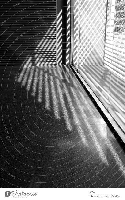 window shadows Schatten Fenster Lichteinfall Streifen Schwarzweißfoto Dreieck Pfeil Architektur Schraffur