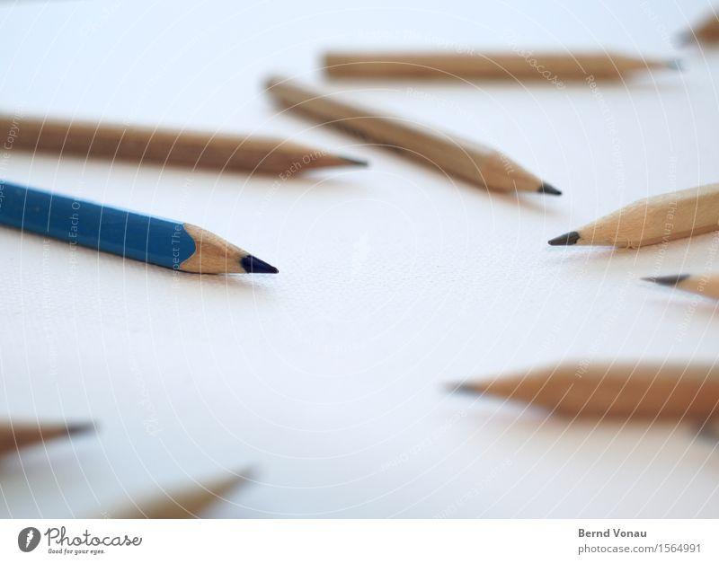 Farbiger Schreibwaren Schreibstift blau braun weiß Bleistift Außenseiter Kreativität Farbe Spitze schreiben zeichnen Holz Anspitzer holzstift Farbstift Schule